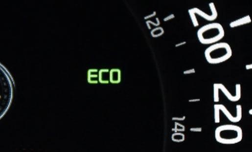 Active Eco